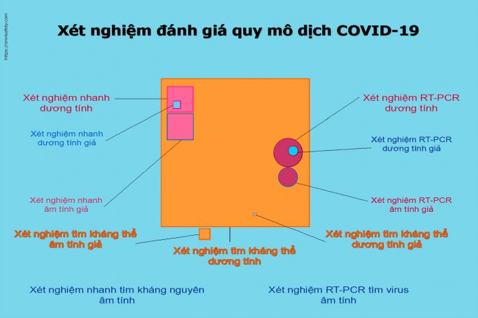 xét nghiệm đánh giá quy mô dịch COVID-19